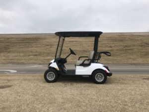 2019 Yamaha QuieTech Fuel Injected Gas White